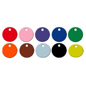PLASTIC Disc Tags Plain (100 pack)